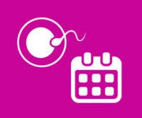 Calculer ma date d'ovulation